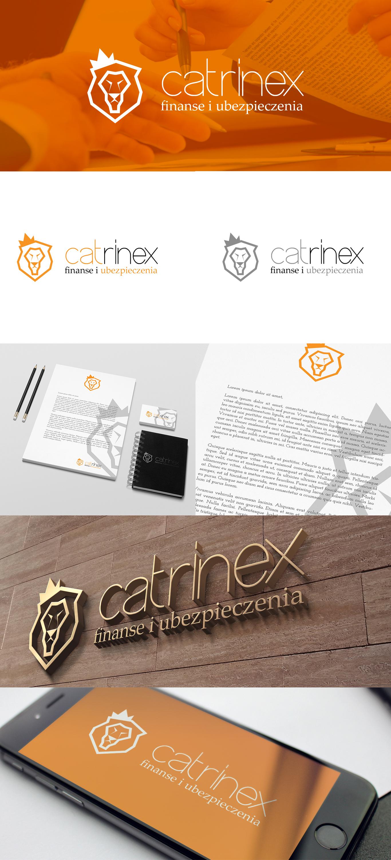 Prezentacja projektu logo dla firmy zajmującej się finansami i ubezpieczeniami